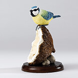 BLUE TIT ON COCONUT SHELL Biblo   - A26892